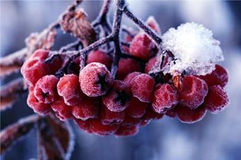 Последние зимние скидки на рольставни